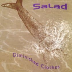 Diminished Clothes by Salad