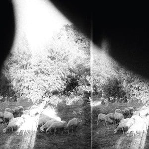 'Asunder, Sweet And Other Distress' by Godspeed You! Black Emperor