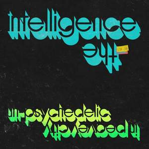 'Un-Psychedelic In Peavey City' by The Intelligence