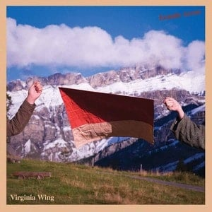'Ecstatic Arrow' by Virginia Wing