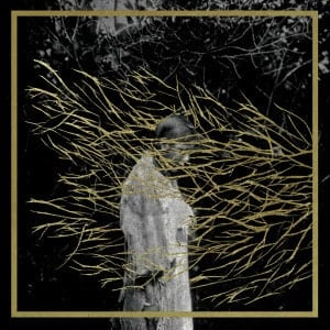 'Engravings' by Forest Swords