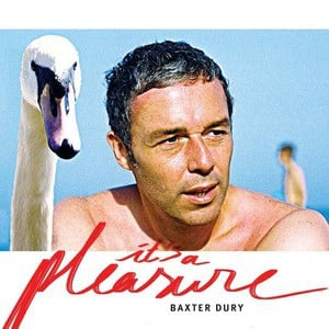 'It's A Pleasure' by Baxter Dury