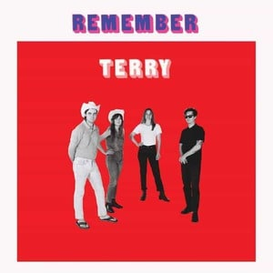 'Remember Terry' by Terry
