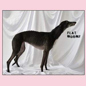 'Flat Worms' by Flat Worms