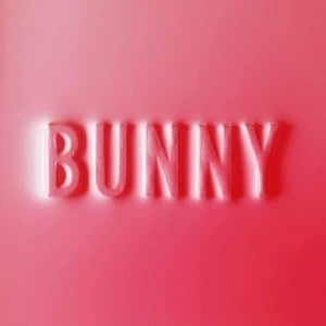 'Bunny' by Matthew Dear