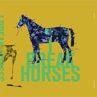 'Hearts' by I Break Horses