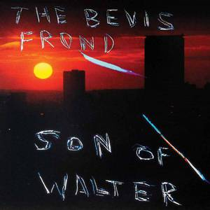 'Son Of Walter' by The Bevis Frond