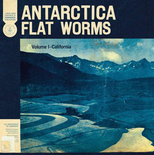 'Antarctica' by Flat Worms