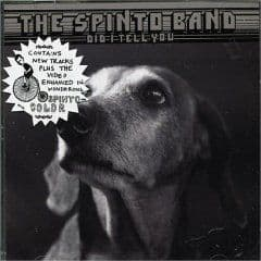 'Did I Tell You' by The Spinto Band