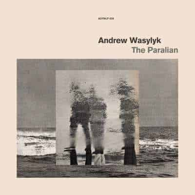 'The Paralian' by Andrew Wasylyk