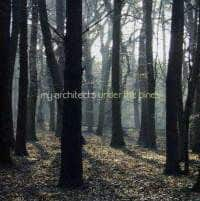 Under The Pines by My Architects