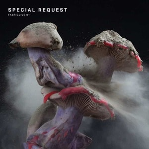 'FABRICLIVE 91: Special Request' by Special Request