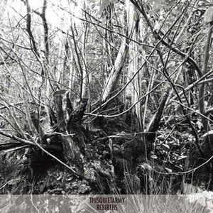 'Rebirths' by Thisquietarmy