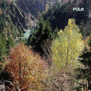 'Wald' by Pole