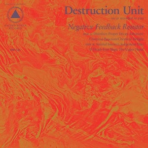 'Negative Feedback Resistor' by Destruction Unit