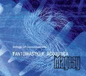 Fantomastique/ Acoustica by Strings of Consciousness
