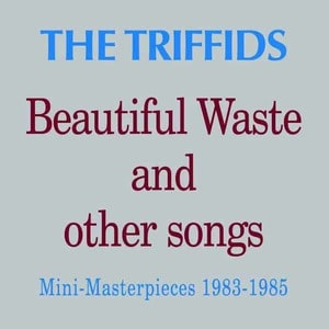 'Beautiful Waste And Other Songs' by The Triffids