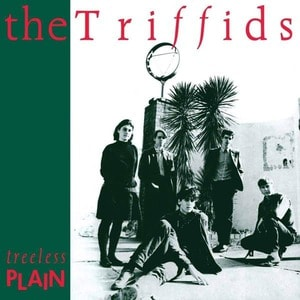 'Treeless Plain' by The Triffids