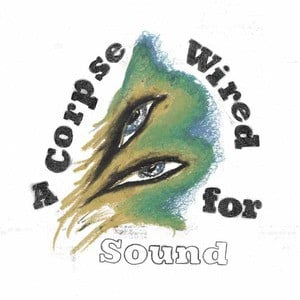'A Corpse Wired For Sound' by Merchandise
