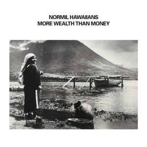 'More Wealth Than Money' by Normil Hawaiians
