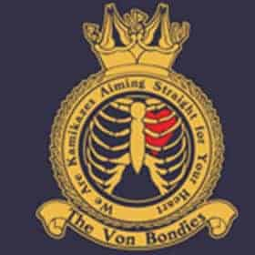 We Are Kamikazes Aiming Straight For Your Heart by The Von Bondies