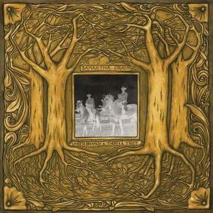 'Under Branch & Thorn & Tree' by Samantha Crain