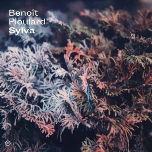 'Sylva' by Benoît Pioulard