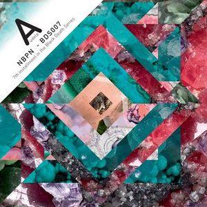 'NBPN' by Audela