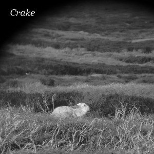 'Enough Salt (For All Dogs) / Gef' by Crake