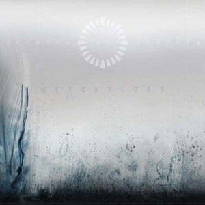 'Weightless' by Animals As Leaders