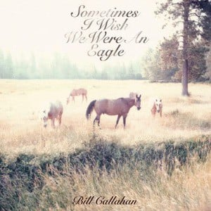 'Sometimes I Wish We Were An Eagle' by Bill Callahan