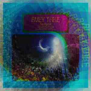 'Eucalyptus' by Avey Tare