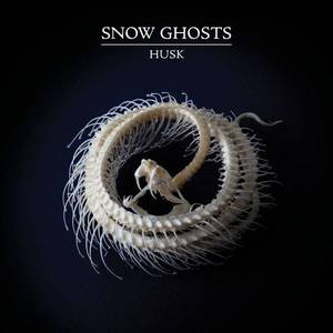 'Husk' by Snow Ghosts