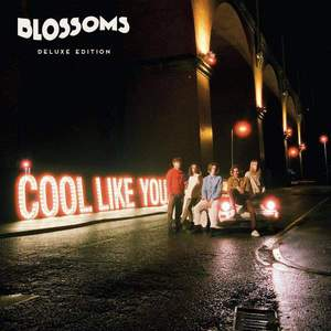 'Cool Like You' by Blossoms