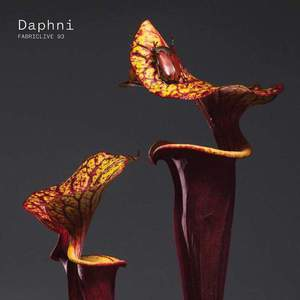 'FABRICLIVE 93: Daphni' by Daphni