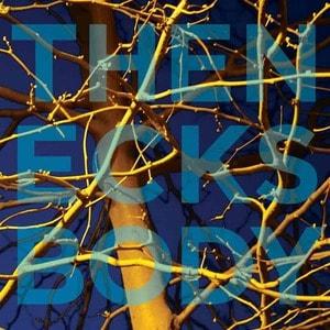 'Body' by The Necks