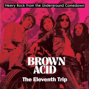 'Brown Acid: The Eleventh Trip' by Various