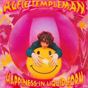 'Happiness In Liquid Form' by Alfie Templeman