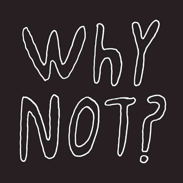 'Why Not?' by Half Japanese