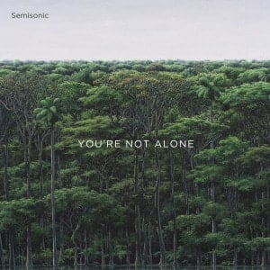 'You're Not Alone' by Semisonic