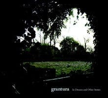 In Dreams and Other Countries by Grantura