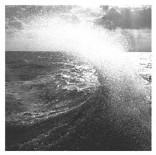 Split by Taiga Remains/ RV Paintings