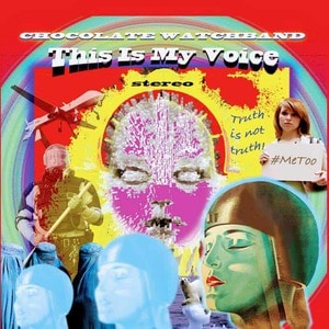 'This Is My Voice' by The Chocolate Watchband