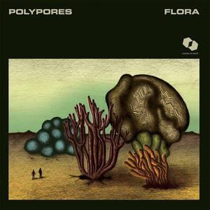 'Flora' by Polypores