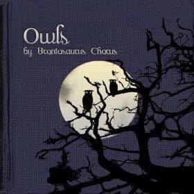 'Owls' by Brontosaurus Chorus
