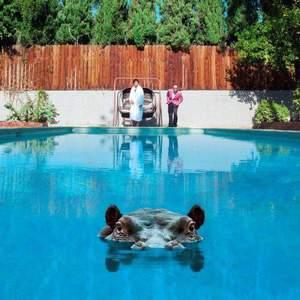 'Hippopotamus' by Sparks