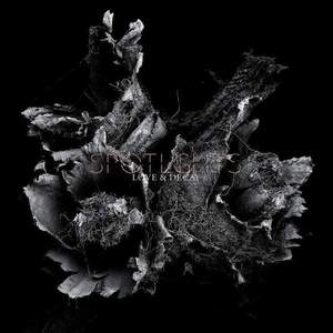 'Love & Decay' by Spotlights