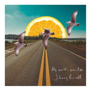 'My World, Your Life' by Johnny Borrell