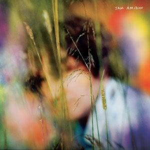 'Sam Amidon' by Sam Amidon