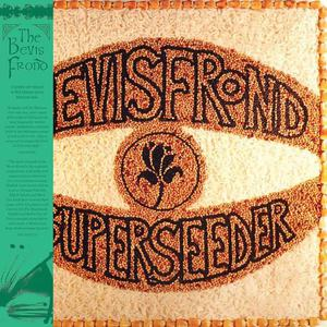 'Superseeder' by The Bevis Frond